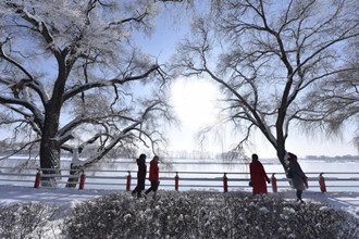 Scenery of rime-covered trees along Mudanjiang River in Heilongjiang