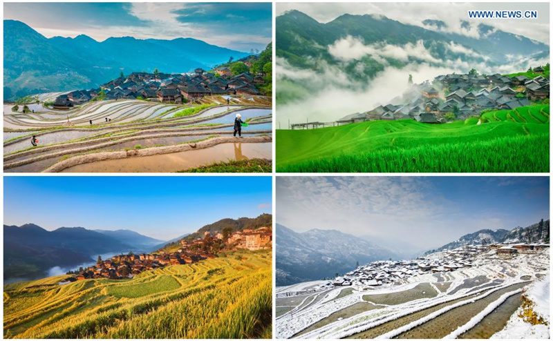 Photographer records changes in Jiabang terraced fields through lens in SW China