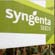 Syngenta faces 2nd lawsuit over GMO corn rejected by China