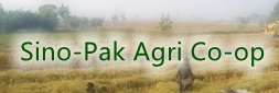 China-Pakistan Agricultural Cooperation