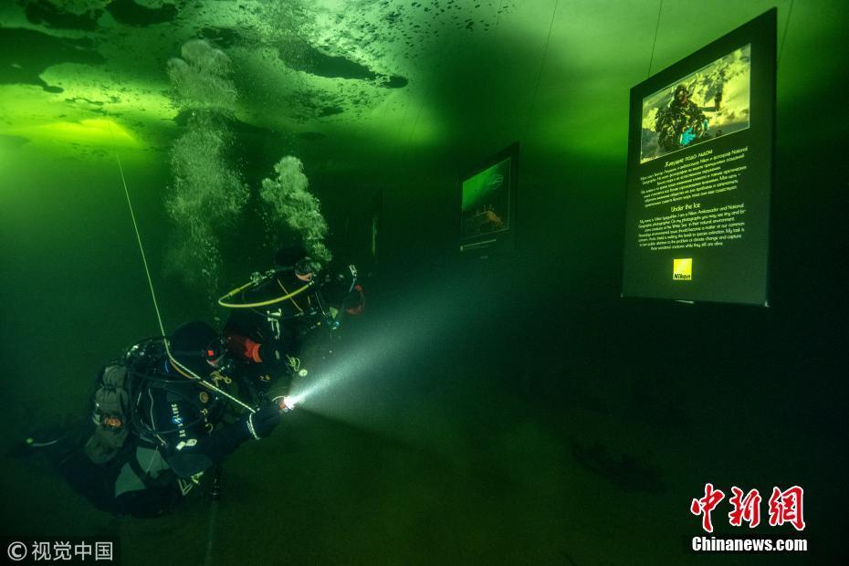 摄影师举办水下艺术展参观者仿若置身幻境