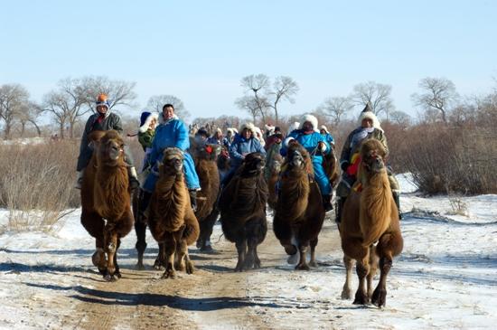 冬季可以进行的节庆活动_2014年锡林郭勒盟冬季节庆活动一览