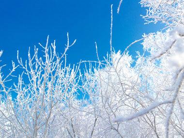 04中国经济网资料图:冬季冰雪 寒冷 摄影 付云鹏 - 副本.jpg