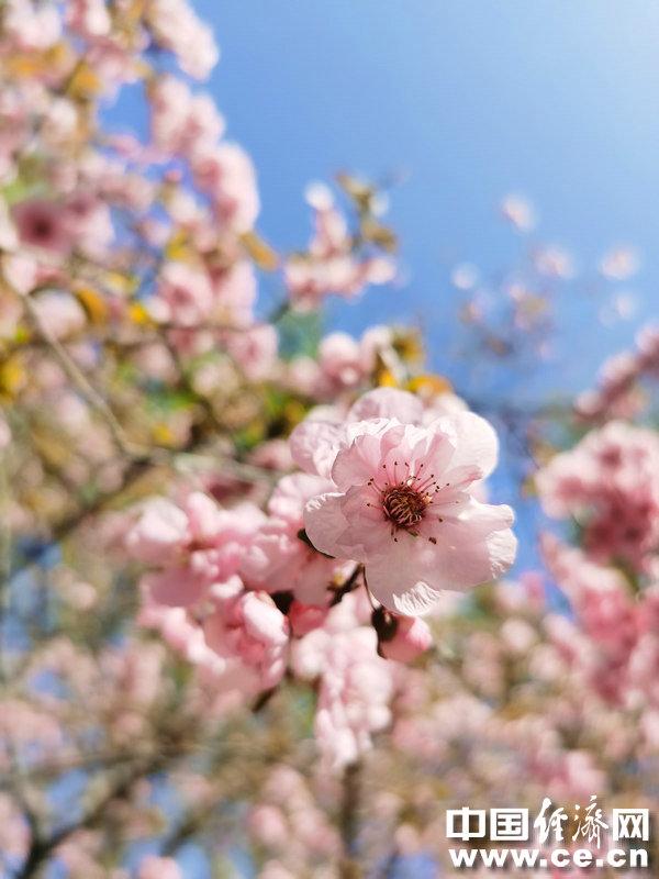 春季肌肤缺水易过敏 如何应对
