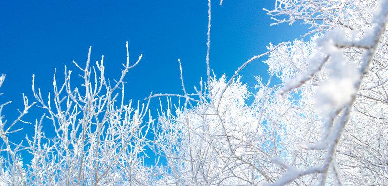 冬季为何会口干舌燥?这些方法能缓解