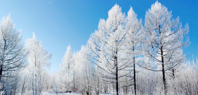 """冬季这样进行""""低温养生""""好处多多"""