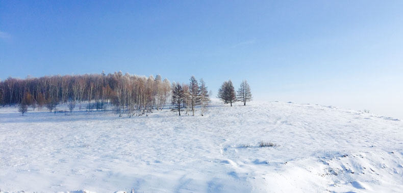 冬季减肥很艰难?这些低卡零食可以吃