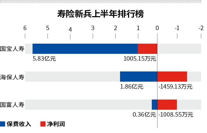 国宝人寿董事长落马 三股东质押全部股权