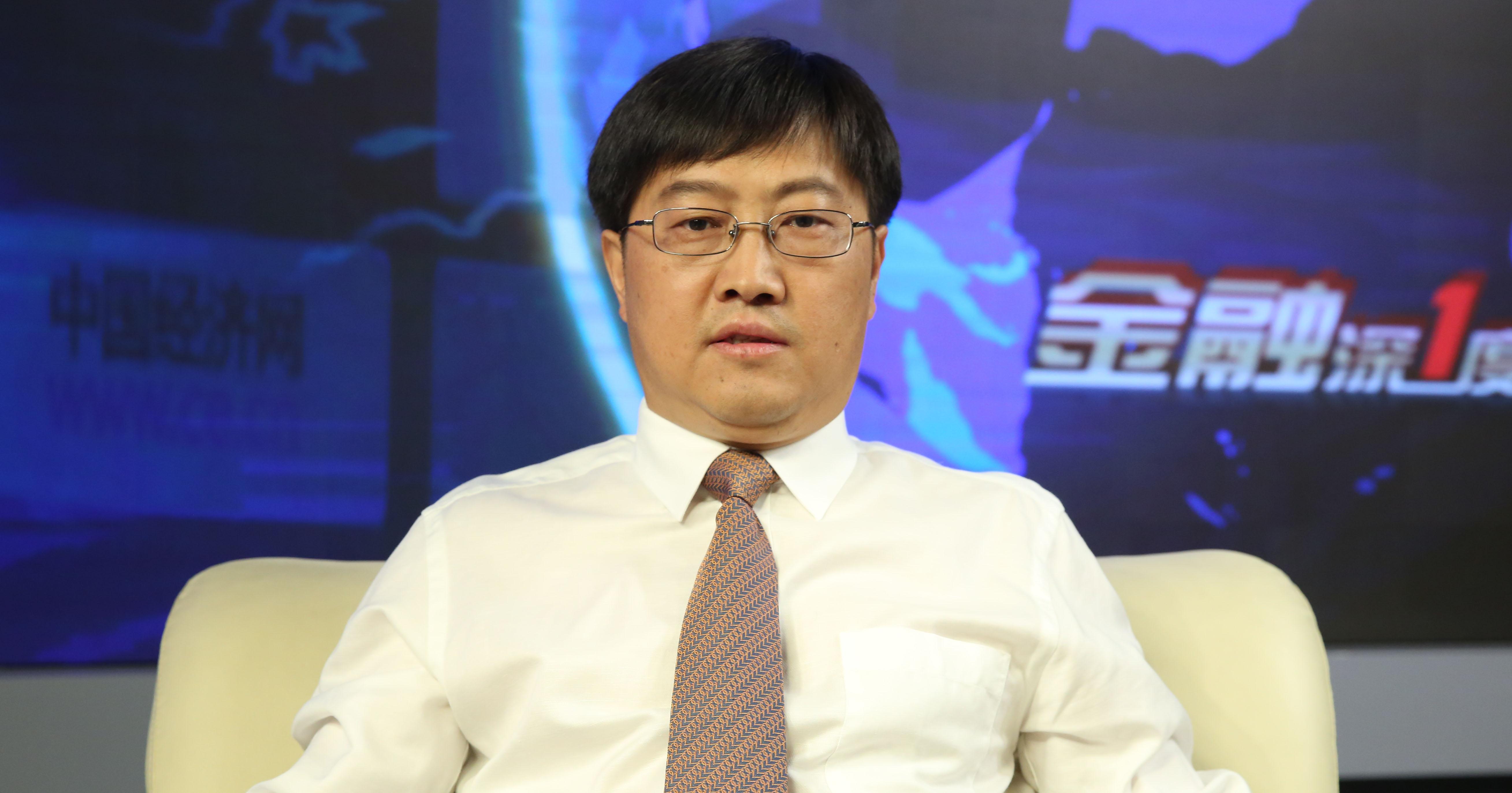 中国石油大学能源战略研究院教授 王震