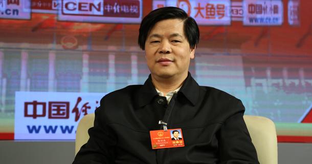 全国人大代表、中国社会保障学会会长郑功成