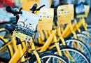 共享单车 享年几岁?