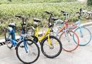 共享自行车出路何在?