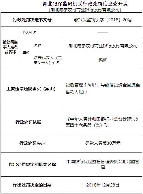 湖北咸宁农商行信贷资金回流至借款人账户遭罚30万元