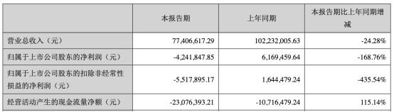 万隆光电扣非净利连降3年去年降314% 营收亏损24.28%