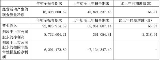 芯能科技(603105.SH)扣非净利润连降4年去年降75% 招商证券保荐