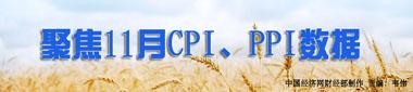 11月CPI、PPI数据