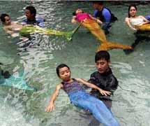 """菲律宾开设""""美人鱼""""游泳课程图片"""
