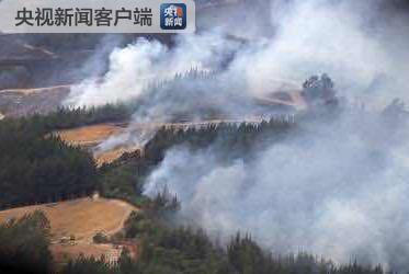 新西兰南岛森林火灾烧毁1900公顷森林