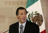 墨西哥外长:中墨关系发展面临历史最好机遇