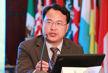 北京大学国际关系学院教授、人大重阳高级研究员王勇_副本220.jpg