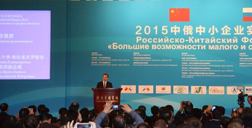 002俄罗斯联邦副总理 德沃尔科维奇-阿-弗发表讲话2.jpg