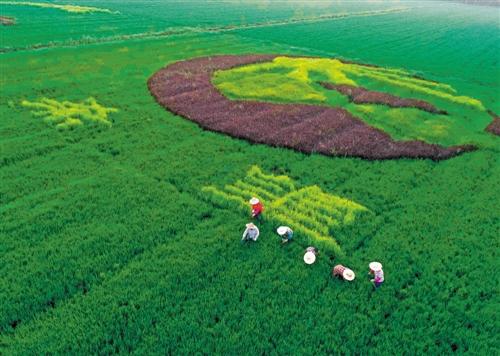 十八大以来我国绿色发展综述:山川添秀色 产业上新阶