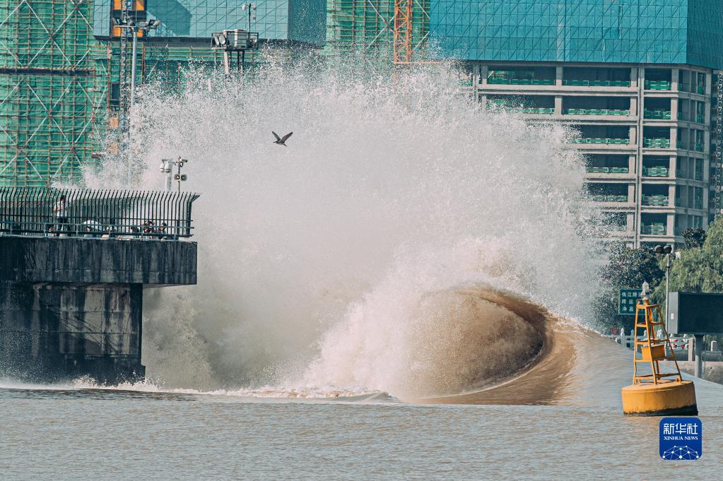 钱塘江:秋分迎大潮