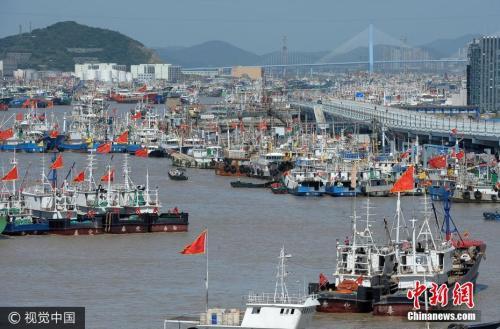 9月13日,浙江舟山,渔船陆续回到沈家门水产码头卸货,再开往就近的沈家门渔港停泊避风。图片来源:视觉中国