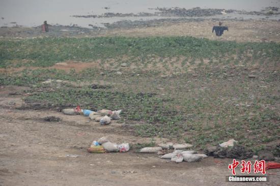 资料图:被污染的河滩 <a target='_blank' href='http://www.chinanews.com/' _fcksavedurl='http://www.chinanews.com/'></table>中新社</a>发 图片来源:CNSPHOTO