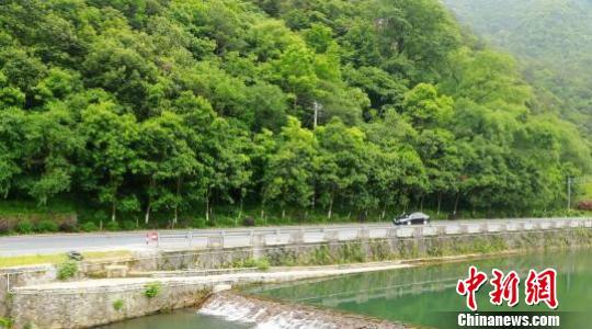 浙江2020年基本建成省内流域上下游横向生态补偿机制