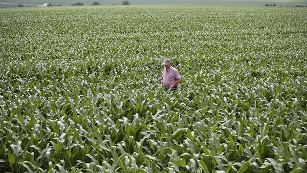 美农业州访问行程调整与经贸磋商无关