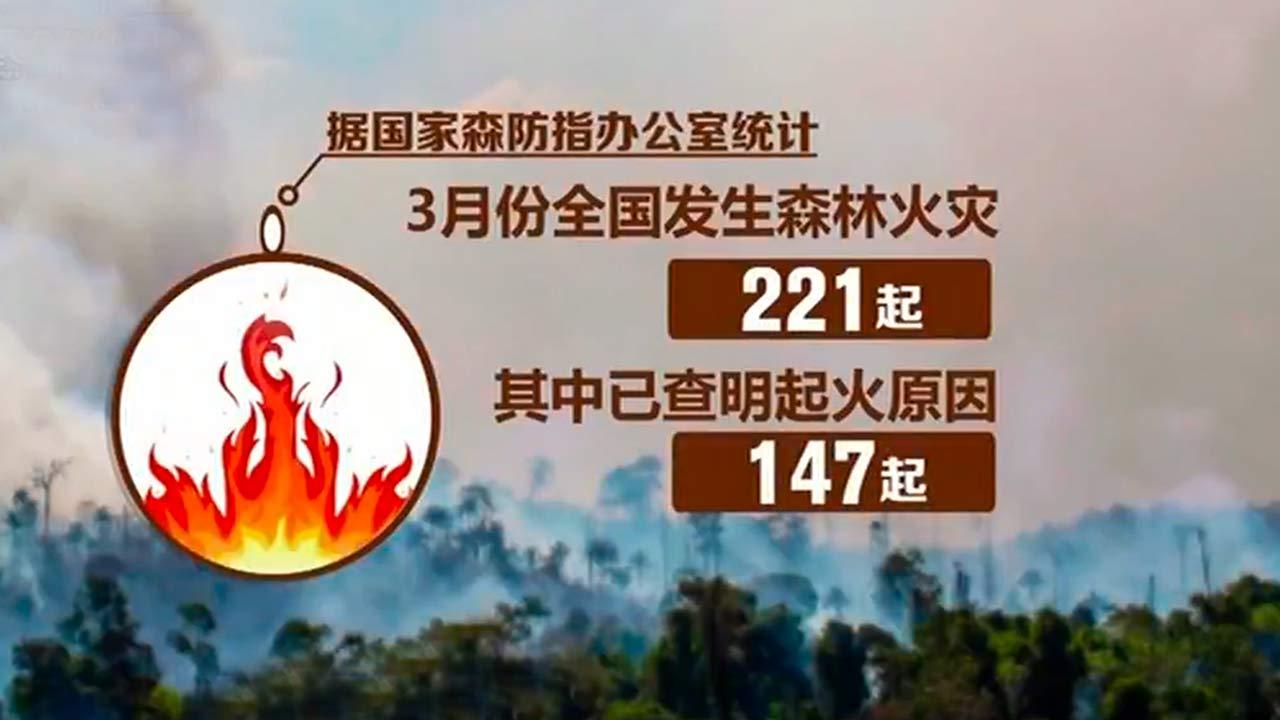 央视新闻客户端|易访@安全隐患大排查 多举措遏制森林火灾高发势头