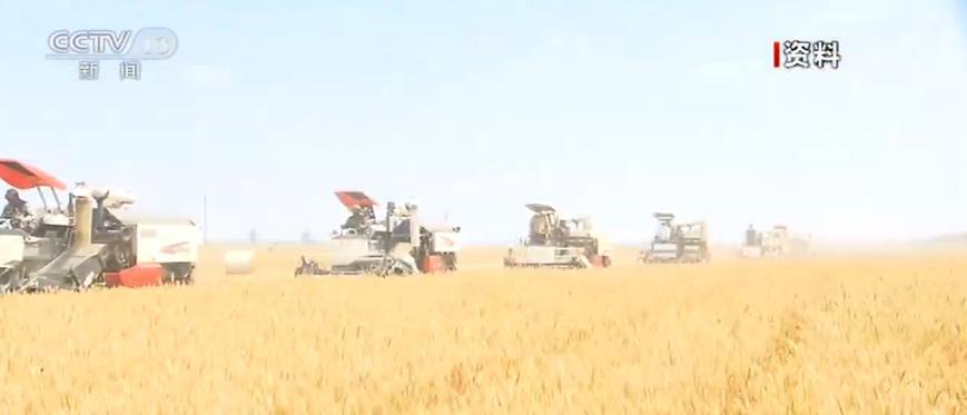 央视网■我国夏粮主要作物小麦由南向北梯次进入集中收获期