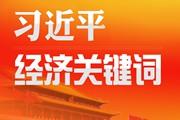 """34194-习近平经济关键词""""样图.jpg"""