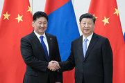 习大大-会见蒙古国总理(180120).jpg