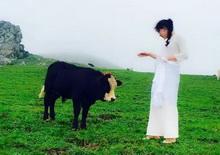 牛郎织女的故事 Beauty and the Beast――何�F熹(Anika He)【视频】