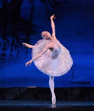 圣诞节和元旦节将至,来沪巡演《天鹅湖》的芭蕾舞团已开始摩肩接踵,有