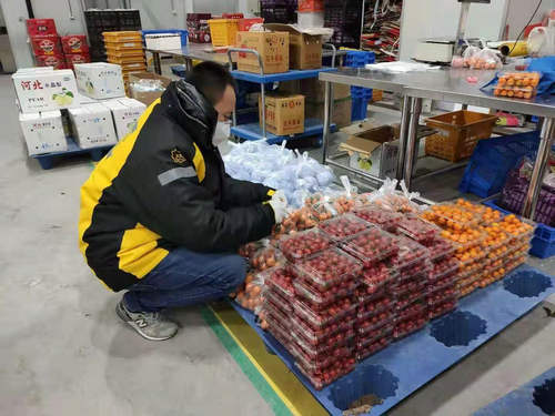 苏宁菜场帮扶农户:物流、人员、销售一手抓
