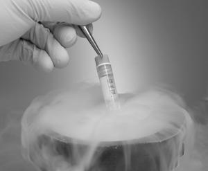 干细胞疗法:让失控的免疫系统安静下来