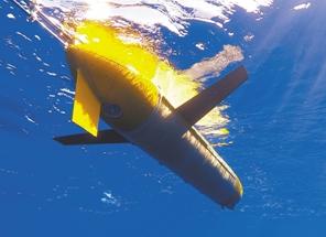 """万米深海 有只""""飞翔""""的""""海燕"""""""