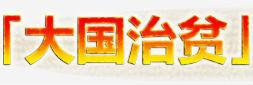 """""""大国治贫""""系列微视频"""