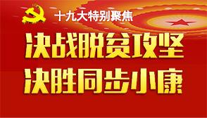 党的十九大特别聚焦(banner).jpg