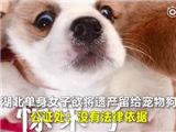 tiugf_副本.jpg